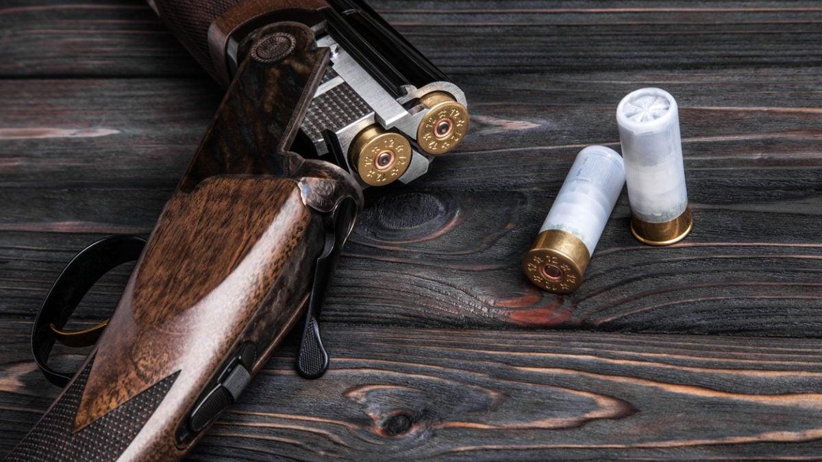 buy a shotgun